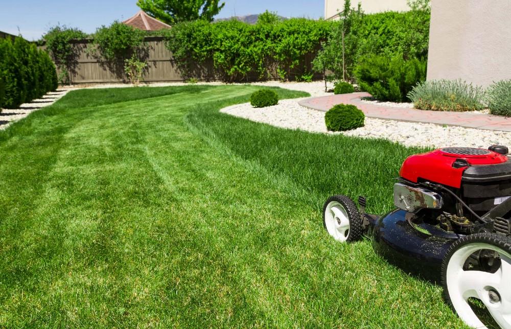 Comment entretenir et traiter une pelouse ?